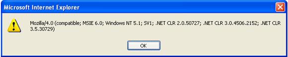 .NET Framework Versie popup